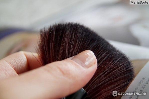 Кисти для макияжа Aliexpress Кисть New Fashion Special Hot Sale Pro Mushroom Blush Loose Power Make up Brush + Case#18995 фото