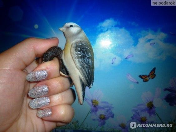 Лак для ногтей Golden Rose Holiday фото