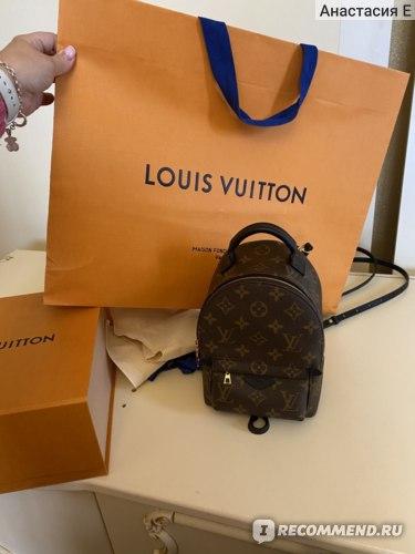 Рюкзак Louis Vuitton Palm Springs Mini фото