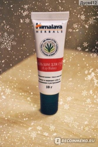 Бальзам для губ Himalaya herbals  фото