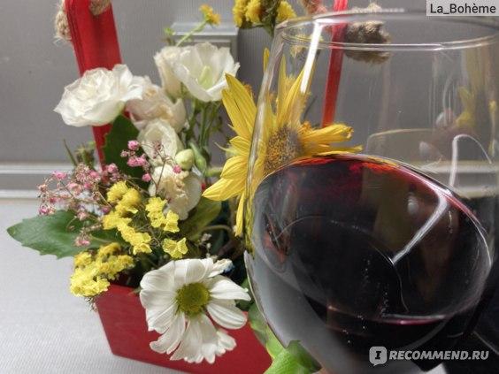 низкоалкогольное вино Аристов отзывы