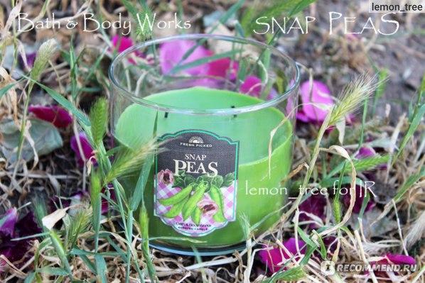Свеча Bath & Body Works - 3-Wick Candle - Snap Peas~Зеленый горошек