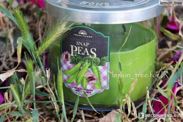 Свеча Bath & Body Works  Snap Peas~Зеленый горошек