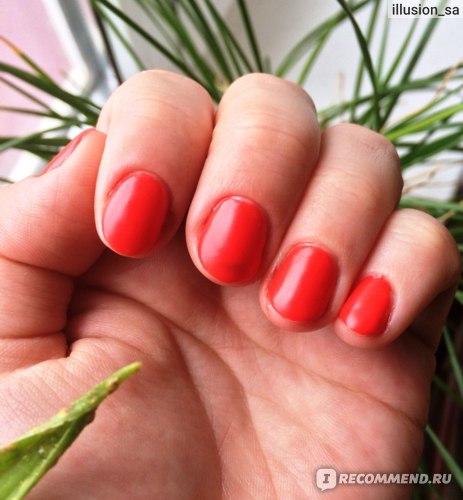Гель для ногтей Aliexpress Hot Sale 36 Pure Color UV Gel Nail Art Tips DIY Decoration for Nail Manicure Gel Nail Polish Extension фото