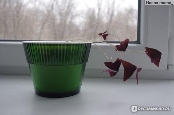 Горшок цветочный Herevin Роза Микс с двойным дном (автополив) Арт: 161150 фото