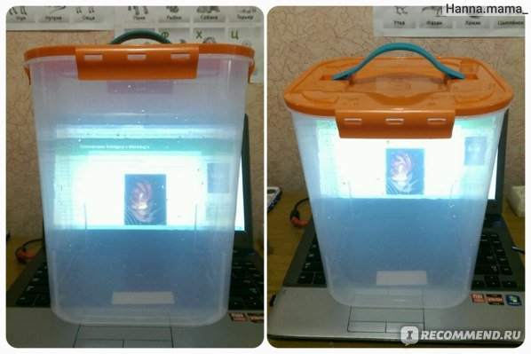 Контейнер для хранения овощей М-пластика АРТ. М2827, 10л. фото