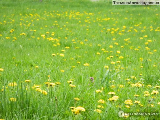 год 2012, весна
