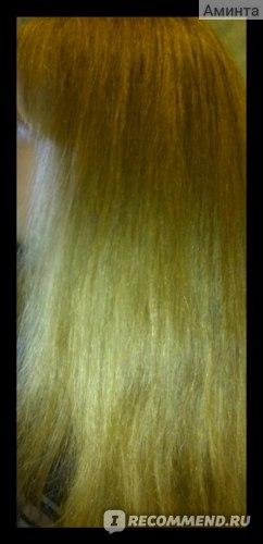 фото волос с использованием данного шампуня