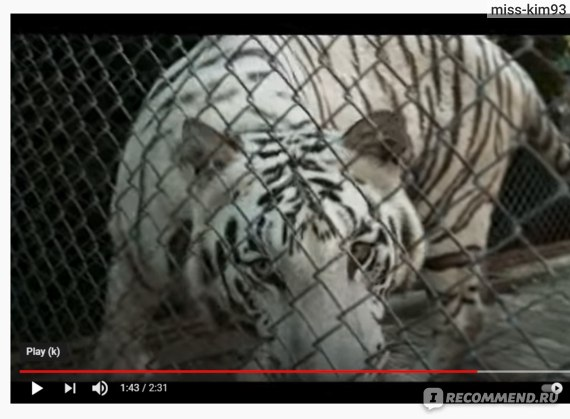 Белый тигр\ The White Tiger (2021, фильм)