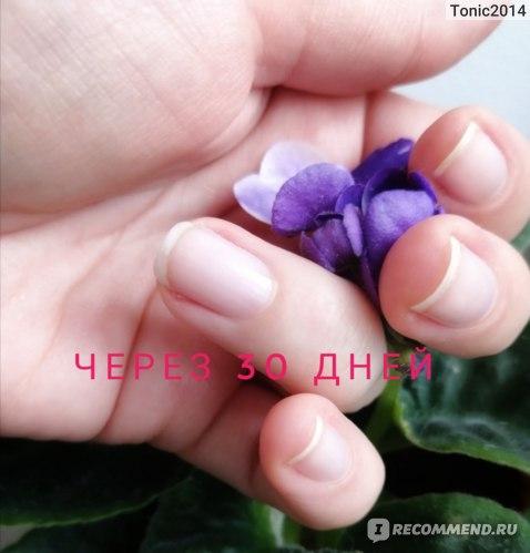 БАД Nulka Спирулина фото