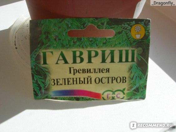 """Гревиллея """"Зеленый остров"""" упаковка семян"""
