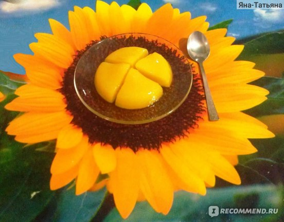 Изображение - Пищевой желатин для суставов как принимать отзывы kOuRXdlX1mlLNRUC9OZnyg