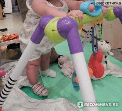 Переносной развивающий центр  с игрушками Taf Toys