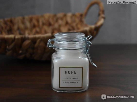 "Ароматическая свеча H&M Hope ""Pine Forest""  фото"