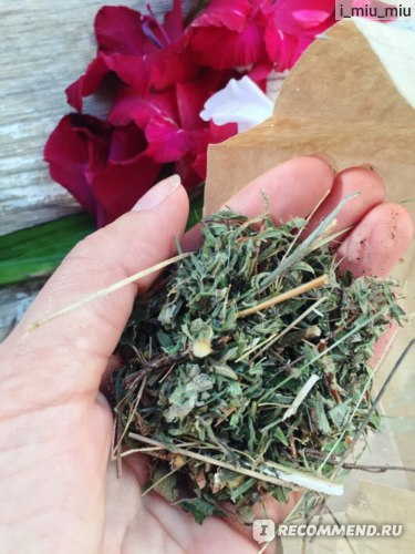 Травяной чай Объятия Алтая Лунные поляны, успокаивающий фото