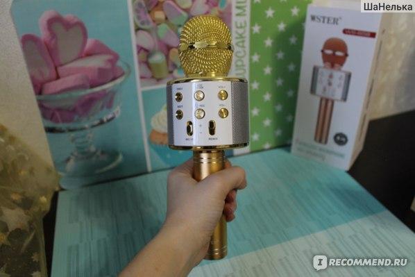 Караоке-микрофон WSTER WS-858 фото