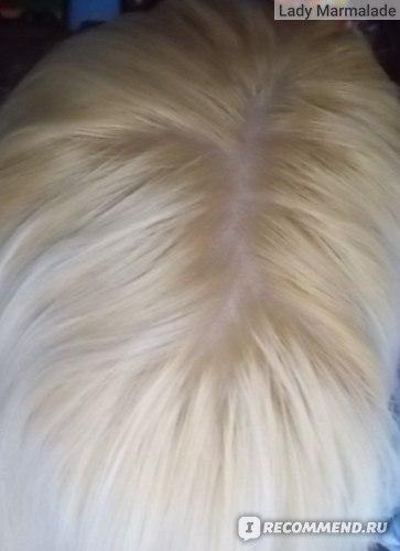 Осветляющий порошок ACME Professional Blond
