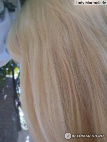 шампунь Kallos для окрашенных волос