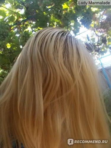 Тонирование волос безаммиачной краской Эстель фото ДО