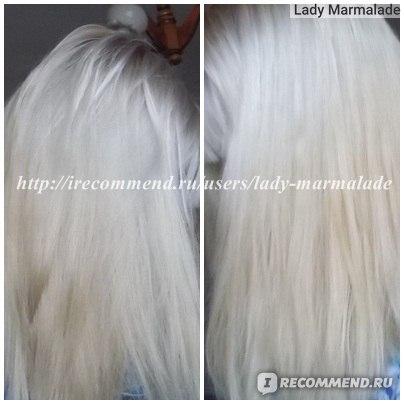 Краска для волос Acme Professional Siena SPECIAL BLOND фото