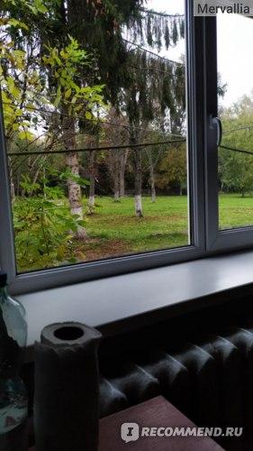 Окно в палате