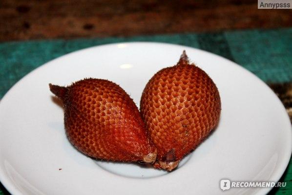 Фрукты Таиланд Салак (Змеиный фрукт) фото
