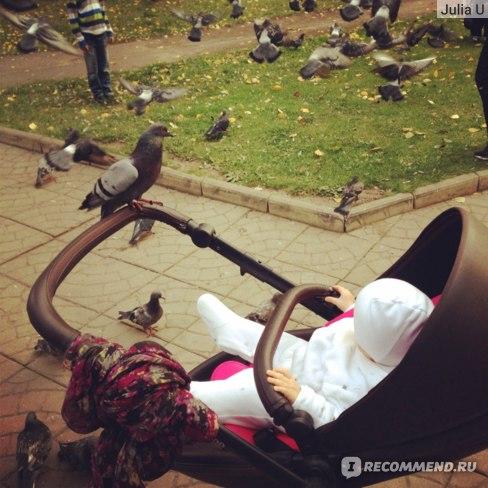 Коляска Mima Xari Flair 2G фото