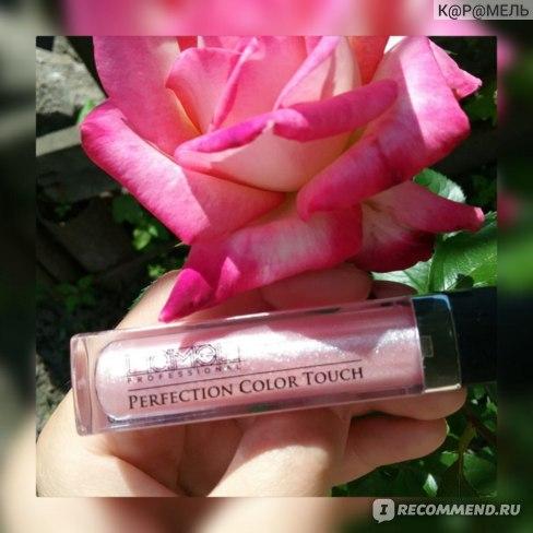 Блеск для губ Lamel Professional Стойкий с эффектом влажных губ фото