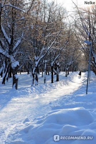 Парк им. С.М. Кирова