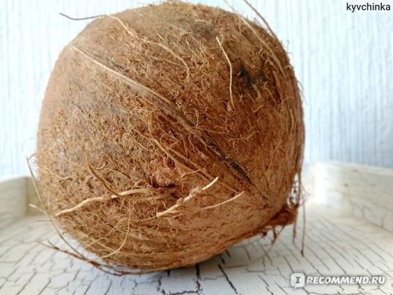 Орехи   Кокос фото