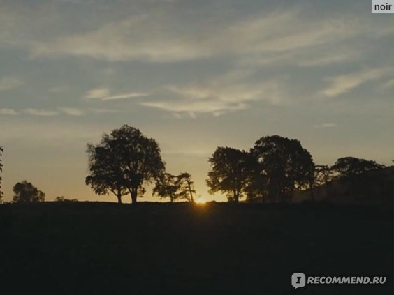 Грозовой перевал / Wuthering Heights  (2011, фильм) фото