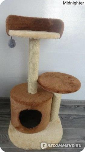 Игровой комплекс для кошек Soana KD050 фото