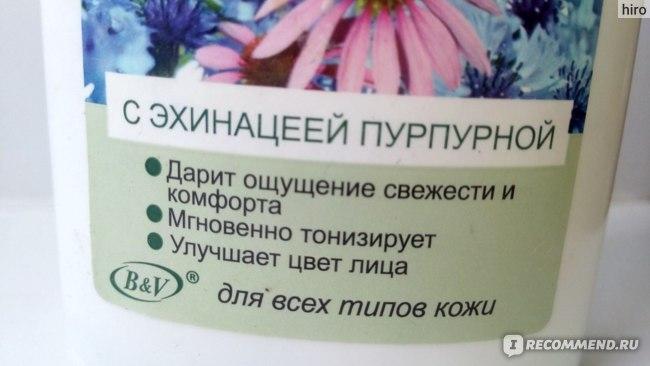 Тоник Белита-Витэкс на васильковой воде с эхинацеей пурпурной Лучшие рецепты  фото