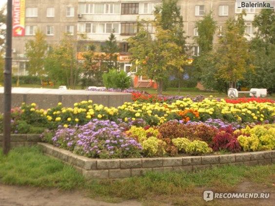 Россия, Алтайский край, Барнаул фото