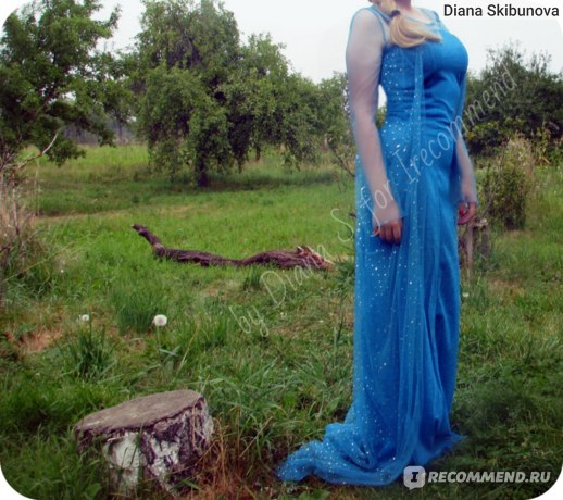 Платье AliExpress Hot sales Christmas Queen Elsa adult women dress cosplay costume flower Fancy Dress free shipping фото