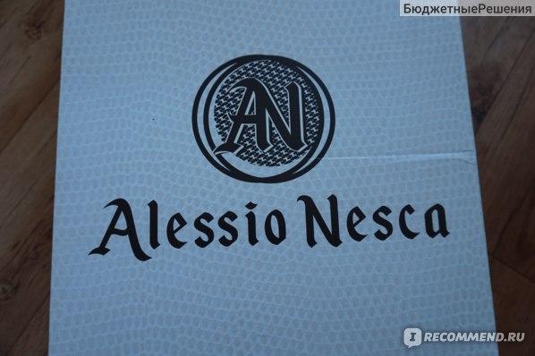 Сапоги женские зимние Alessio Nesca Kari, Арт.:  21605570 фото