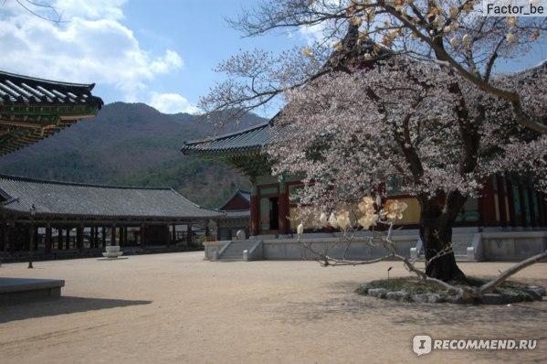 Самые красивые места Кореи