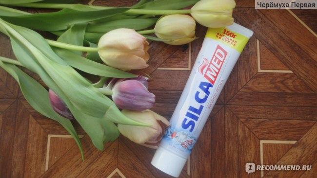 Зубная паста silka med зимняя ягода