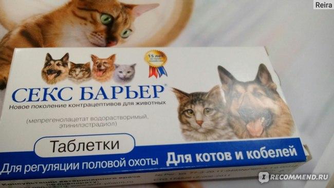 Мжно ли коту давать секс барьер