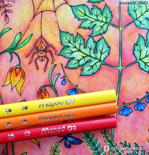 Заколдованный лес (Зачарований ліс) / Зачарованный лес. Книга для творчества и вдохновения. Джоанна Басфорд фото
