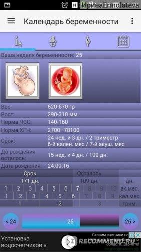 Компьютерная программа Календарь беременности фото