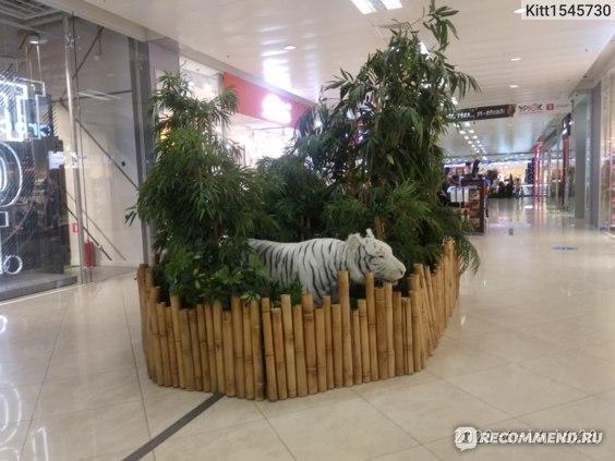 Торговый Центр Европейский, Москва фото
