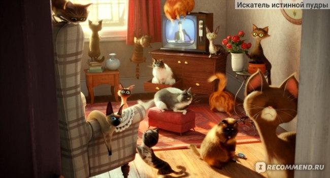Тайная жизнь домашних животных / The secret life of pets фото