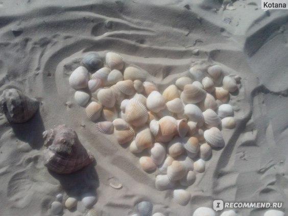 Железный Порт пляж, песок, ракушки