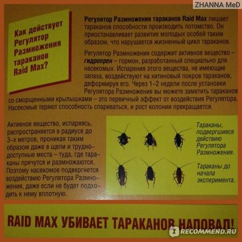 Действенное средство для борьбы с тараканами - Raid Max с регулятором размножения отзыв