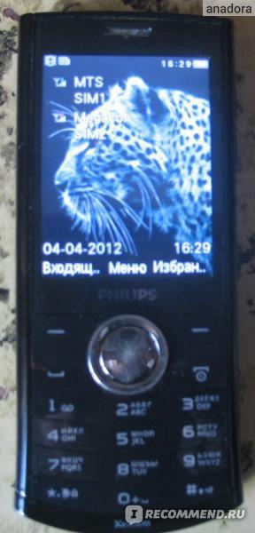 Philips xenium x503 фото