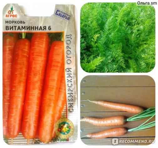 """Морковь """"Витаминная 6""""  АГРОС фото"""