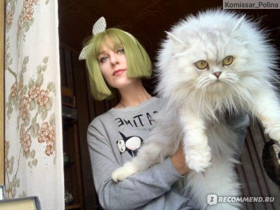 Парик Aliexpress Ailiade зеленый, прямой,длина 12 дюймов Straight Short Bob Wigs Bangs Green Anime Cosplay Wig Female Daily False Hair фото