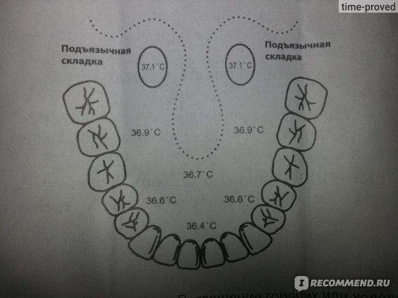 Медицинский электронный термометр B.Well WT-07 JUMBO фото