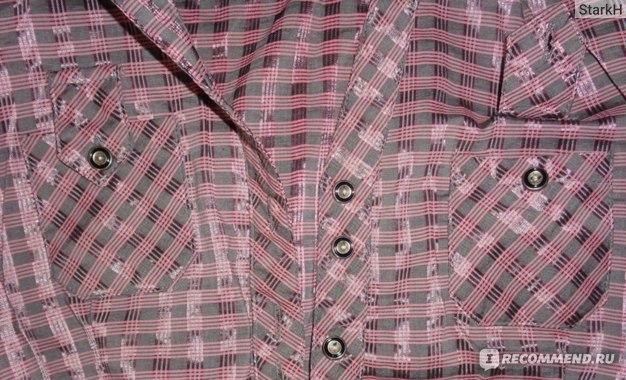 Рубашка Kliman Collection